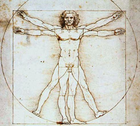 Ergonomics Vinci